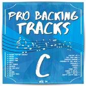 Pro Backing Tracks C, Vol. 14 by Pop Music Workshop