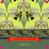 Colorful Garden by Odetta