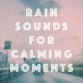 Rain Sounds for Calming Moments by Various Artists