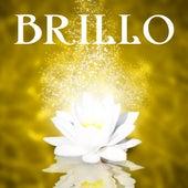Brillo – Astucia, Elegancia, Ligero, Fresh, Green, Sensual, Sexual, Sexy, Sonar, Vibración de Meditación Música Ambiente