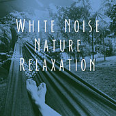 White Noise Nature Relaxation by Various Artists