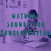Natural Sounds for Concentration by Various Artists