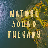 Nature Sound Therapy by Various Artists
