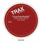 Can You Feel It (Carmelo Carone Remixes) by Larry Heard