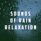 Sounds of Rain Relaxation by Various Artists
