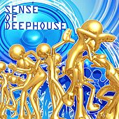Sense of Deephouse by Various Artists