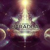 Uaradua by Majed Salih