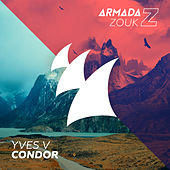 Condor by Yves V