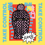 Take Control von Slaves