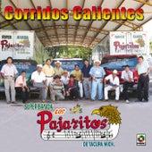 Corridos Calientes by Los Pajaritos De Tacupa