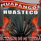 El Sabor De Mi Tierra Huapangos Huastecos de Various Artists