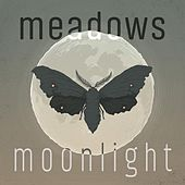 Moonlight by The Meadows
