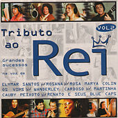 Tributo ao Rei  Vol.2 von Various Artists
