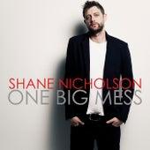 One Big Mess by Shane Nicholson