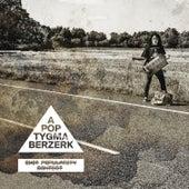 The Cosmic Chess Match (Radio Edit) de Apoptygma Berzerk