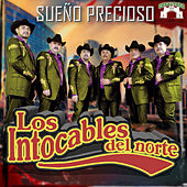 Sueno Precioso by Los Intocables Del Norte
