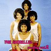 The Shirelles Medley 2: You Don't Want My Love / A Teardrop and a Lollipop / The Things I Want to Hear (Pretty Words) / Tonight at the Prom / My Love Is a Charm / Twenty-One / Without a Word of Complaint / Slop Time de The Shirelles