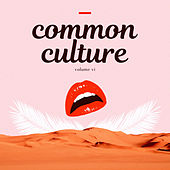 Common Culture, Vol. VI van Various Artists