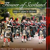 Flower of Scotland by Pride Of Murray Pipe Band