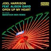 Open Up My Heart by Joel Harrison