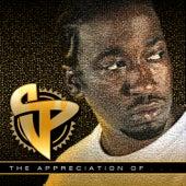 The Appreciation Of… de Various Artists