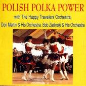 Polish Polka Power by Various Artists