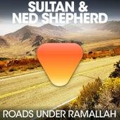 Roads Under Ramallah de Ned Shepard