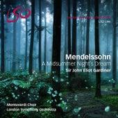 Mendelssohn: A Midsummer Night's Dream von Various Artists