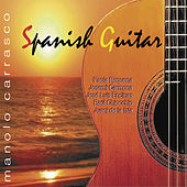 Spanish Guitar de Various Artists
