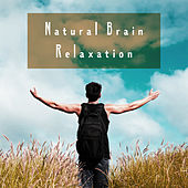Natural Brain Relaxation by Various Artists