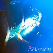 Amazing by Louden Swain