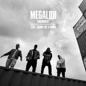 Einhundert von Megaloh