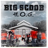 H.O.G. by Big Scoob