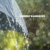Ambient Raindrops by Various Artists