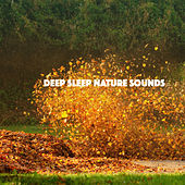 Deep Sleep Nature Sounds by Various Artists