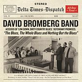 The Blues, The Whole Blues and Nothing But the Blues by David Bromberg