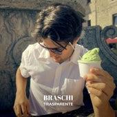 Trasparente di Braschi