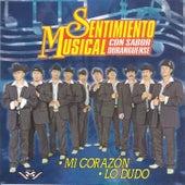 Mí Corazón de Sentimiento Musical