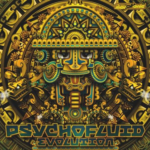 Psychofluid: Evolution von Various Artists