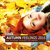 Autumn Feelings 2016 - 30 Lounge Tracks to Relax by Various Artists
