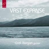 Vast Expanse by Gidi Ifergan