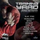 Training Yaad Riddim by Various Artists