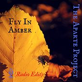 Fly in Amber by The Aparte Project