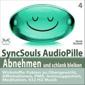 Abnehmen und schlank bleiben - SyncSouls AudioPille: Fakten zu Übergewicht, Affirmationen, PMR, Auto von Torsten Abrolat