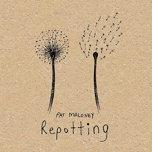 Repotting by Pat Maloney