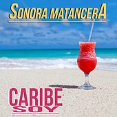 Caribe Soy by Various Artists
