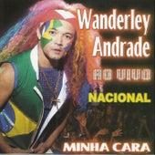 Minha Cara (Ao Vivo) de Wanderley Andrade