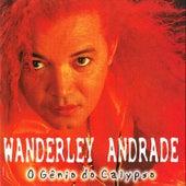 O Gênio do Calypso de Wanderley Andrade