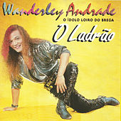 O Ladrão de Wanderley Andrade