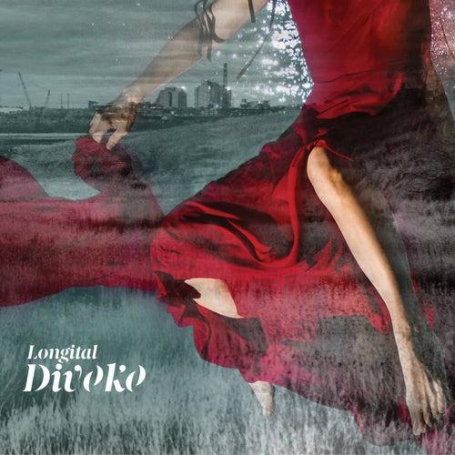 Divoko by Longital